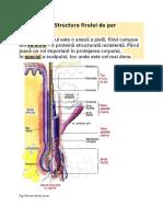 Structura Firului de Par (1)