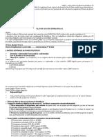 Anexa 2 Model Plan de Afaceri SM6.2