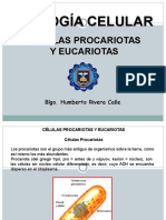 Diapositiva 1.- Celula Procariota y Eucariota
