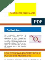 MARCADORES-MOLECULARES