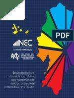 Analisis_situacion_LGBTI _ecuador.pdf