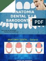 Anatomia y Barodontalgia