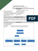 Perfil de Cargo Director en Finanzas X (1)