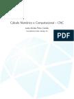 Cálculo Numérico e Computacional.pdf