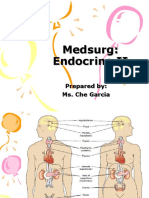 Endocrine System 2 Review