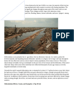 10 causes of deforestation article.docx