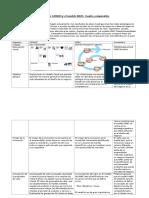 Producto Academico 1-Desarrollo de Productos