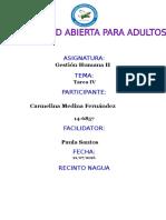 TAREA IV GESTION HUMANA CARMELINA MEDINA.docx