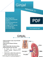 Gagal Ginjal Presentasi-1