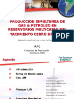 15.00hs.Dalle Fiore.ppt Presentaci�n HGOR Production V2.ppt