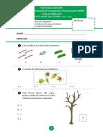 Subiect_si_barem_Matematica_EtapaI_Clasa0_12-13.pdf