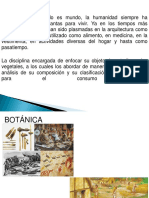 Botanica Clase 1 (1)