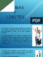 Normas y Limites