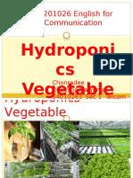 hydroponics presentation