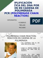 reaccion en cadena de la polimerasa (PCR)