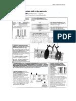 07_membranas_esquemas.pdf