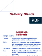 3_Salivary Gland.ppt