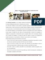 Taxonomía Colecciones Científicas