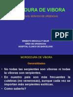 MORDEDURA DE VIBORA