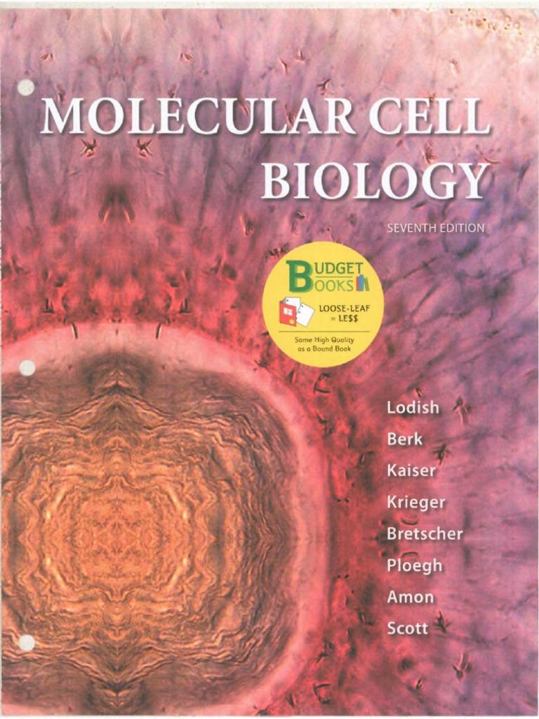 Molecular cell biology 8th edition harvey lodish2120ebook dl molecular cell biology 8th edition harvey lodish2120ebook dl cell biology proteins fandeluxe Choice Image