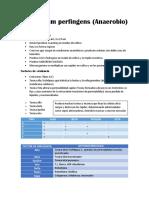 Clostridium Perfingens