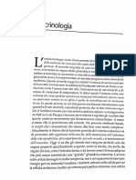 Endocrinologia - Spattini
