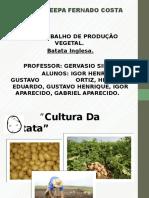 Batatinha Inglesa {Colegio Agricoila}