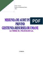 Misiunea-de-Audit-Intern-Privind-Gestiunea-Resurselor-Umane.doc