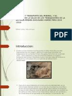 Carguio y Transporte Del Mineral, Riesgos y