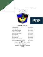 PBL MODUL 1 BATUK RESPI.docx
