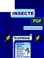 0insecte.ppt