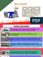 EL SEITON.pptx