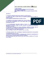 ANFIS0399Y.pdf