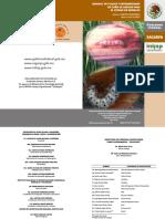 PLAGAS Y ENFERMEDADES DE LA CAÑA DE AZUCAR.pdf