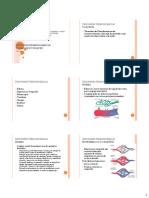 Desordens Hemodinâmicas - Trombose e Choque 1