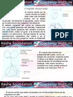 Especial Salud Cáncer - 3 - Fundación Keshe 2017.pptx