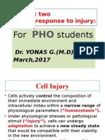 3. cellular response to injury.pptx