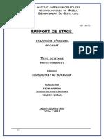 rapport de stage technicien amro heni.docx