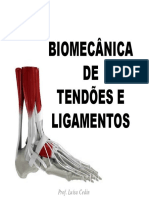 Aula 5 - Biomecânica de Tendões e Ligamentos2