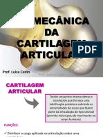 Aula 4 - Biomecânica Da Cartilagem Articular (1)