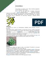 CANCIONES CLASICAS LETRA.docx