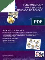 Fundamentos y Procesos Del Mercado de Divisaster