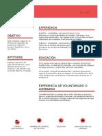 Curriculum v It