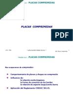 Curso Cirsoc 301 2008 Placas Comprimidas