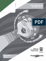 Guia_Docente_Grado07.pdf