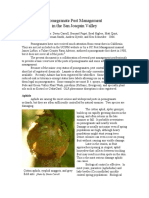 Pomegranate Pest Menagment