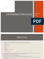 16 Chapter19 Enterobacteriaceae 121004141132 Phpapp01