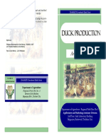 Duck_Production (3).pdf