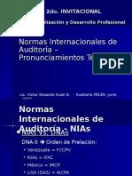 Normas Int de Auditoria 2