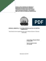 Gerencia ambiental y procesos